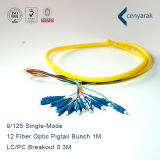 High Quality 9/125 Singlemode LC/PC 12 Fiber Optic Pigtail Bunch