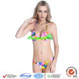 Ladys′ Sexy Bikini/Hot Stitching Bikini