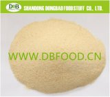 New Crop Garlic Granule40-80mesh G1 with Brc Certificate