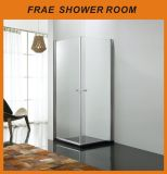 Clear Two Pivot Shower Door / Shower Room