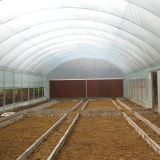 Agriculture Easily Installed Single Span Agricultural Film Green House