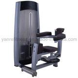 Wholesale Body Building Equipment Rotary Torso for Gym