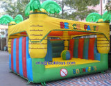 Various Types Inflatable Bouncer Made in China Products (A106)