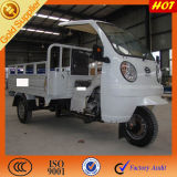 Adult Gas Motor Cargo Cabin Tricycle