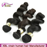 Malaysian Natural Loose Wave Hot Selling Virgin Hair