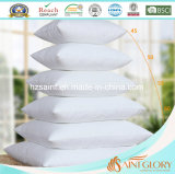Classic Factory Price White Duck Feather Cushion Home Scatter Cushion