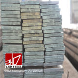 Types of Steel Flat Bar China Steel Factory