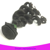 Direct Factory Wholesale Virgin Indian Human Hair Weft Loose Curly