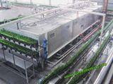 Bottling Line Conveyor & Conveying System