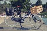 Vintage Lady Style 200W/250W/350W Electric Bicycle/Electric Bike/E Bike/Pedelec/E Bicycle W Front Basket Ce, En15194