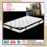 Economical Pillow Top Continuous Spring Mattress with Beautiful Cover