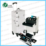 Hot Sale Beauty Trolley Case (HX-PT003)