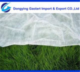 PP Spunbond Nonwoven Fabric Used on Agriculture