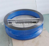 Dn40~Dn600 Pn1.0/1.6 Mpa DIN, ANSI Power Station Duo Check Valve