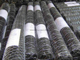 PVC Coated Hexagonal Wire Netting/ Hexagonal Wire Mesh
