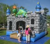 Inflatable Wizard′s Castle and Slide (CZH-1023)