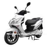 1000W 1500W 2000W Cuba Panama Brazil Aguila Ava Unico Adult Electric Motorcycle (Hunt Eagle-7)