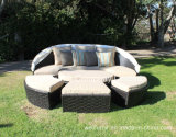 Garden Patio Rattan Bed / All-Weather Resin Wicker Outdoor Daybed
