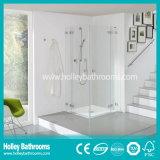 High Ending Shower Cabin with 2 Hinger Doors (SD301N)