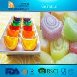 Best Thickners&Stabilizers in China-Gelatin