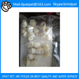 Factory Bleached Rawhide Dog Chews Rawhide Bones White Beefhide Chews for Dogs
