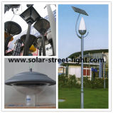 Top Selling 15W Solar Garden Light for Outdoor Lighting