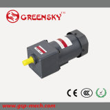 GS High Efficient 110V 6W~120W 90mm AC Induction Motor