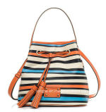 Hot Selling High Quality Stripe Designer Ladies Canvas Bag (ZX20286)