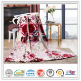 High Quality Four Season Polar Fleece Coral Fleece Blanket