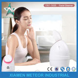 Home Use Portable Beauty Instrument Mist Sprayer Anion Facial Steamer