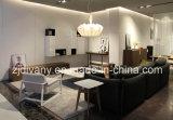 European Style Home Sofa Living Room Fabric Sofa Set (D-74)
