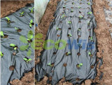 China Manufacturer Plastic Mulching Film (HT5103)