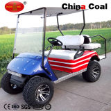 Factory Price 2 Seater Electric Golf Cat