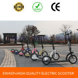 Chinese High Quality Mini Folded Electric Bicycle
