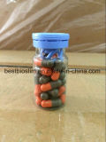 OEM/ODM Orange and Gray Weight Loss Capsule