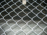 Hot Dipped Galvanized Chain Link Fence, Chain Link Wire Mesh