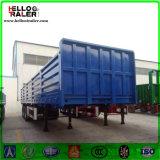 3 Axle Multi- Function Cargo Semi Trailer/Side Wall Semi Trailer for Sale