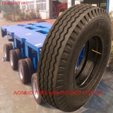 China Trailer Tire STB (175/80d13, 205/75D14, 2025/75D15, 225/75D15)