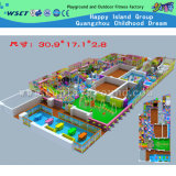 Indoor Playground Factory Price Playground Children Playground (H14-0916)