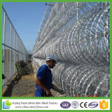 Razor Wire Is a Premium Security Fencing Solution