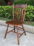 Solid Wooden Dining Chairs Windsor Chair Outdoor Chairs (M-X2049)