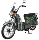Electric Bicycle/Bike/Scooter (TDL916Z)