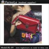 Handbags Ladies /Women Satchel /Messenger Bag (NL-09)