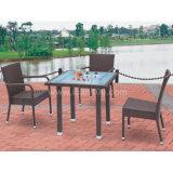 Garden Furniture Outdoor Rattan Wicker Dining Set (WS-06003)