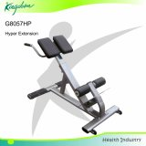 Fitness Equipment/Fid Bench/Weight Bench/Gym Equipment Hyper Extension