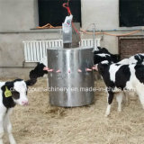 Automatic Acidified Milk Feeding Machine for Calf Feeding