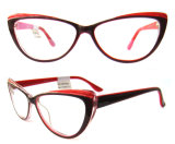 Double Color Cat Eye Cp Injection Eyewear for Young Lady