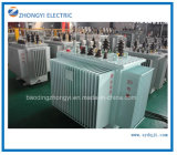 Electrical Toroidal Power Transformer/Oil Type Transformer