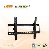 Gold Supplier 75mm to Wal Tilt TV Wall Mount (CT-PLB-201)