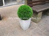 Garden Decorative Fiberglass Flower Planter